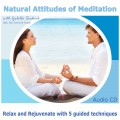 Natural Attitudes of Meditation CD